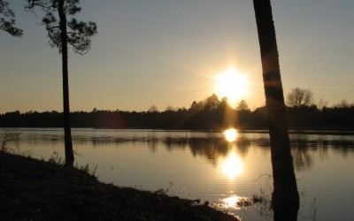 Highland Lake – 109 Acres in Bulloch County, GA  ** UNDER CONTRACT**