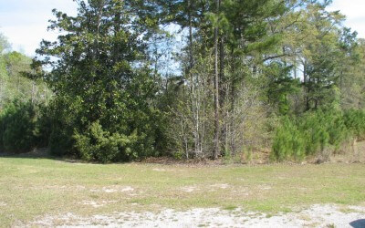 Richmond Hill Plantation Parcel – 2.42 Acres