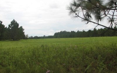 Highlands Acreage Tracts 7.56 acres