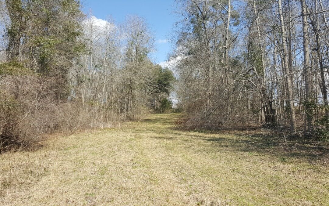 Hillside Farm 74 Acres (Under Contract)