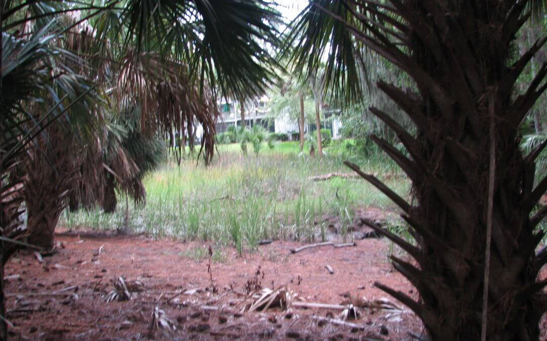 Wilmington Island Residential Land