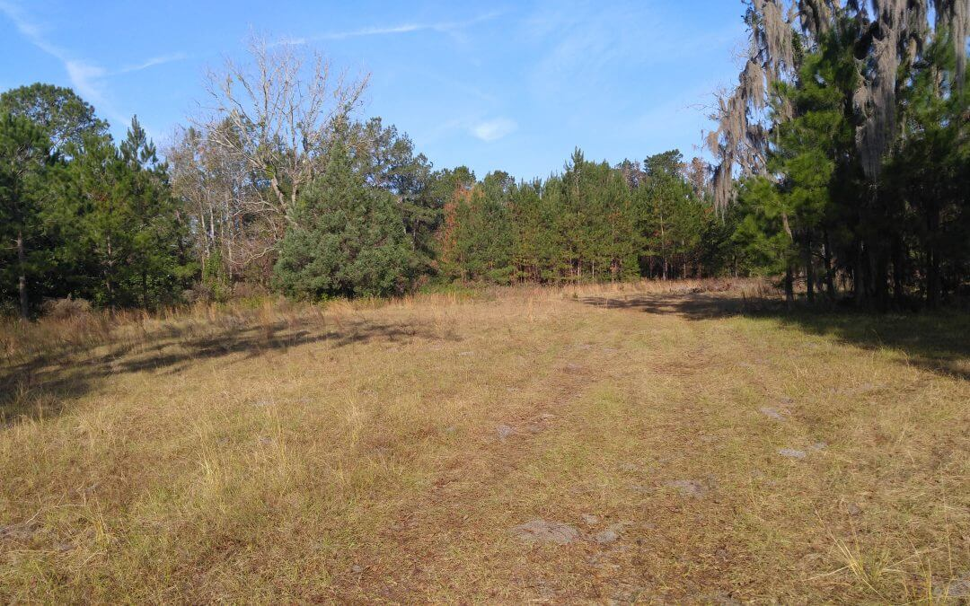6.87 ACRES BUSINESS/ COMMERCIAL/ MULTI-FAMILY OPPORTUNITY **UNDER CONTRACT**