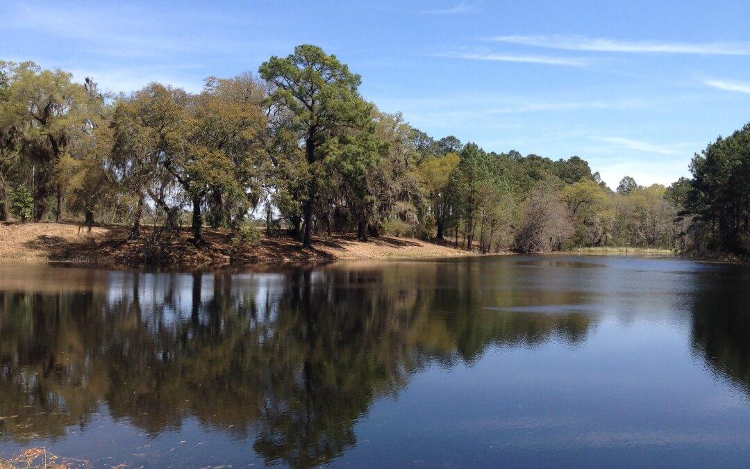 Blackwater Ranch & Sporting Retreat – Tattnall County, Georgia