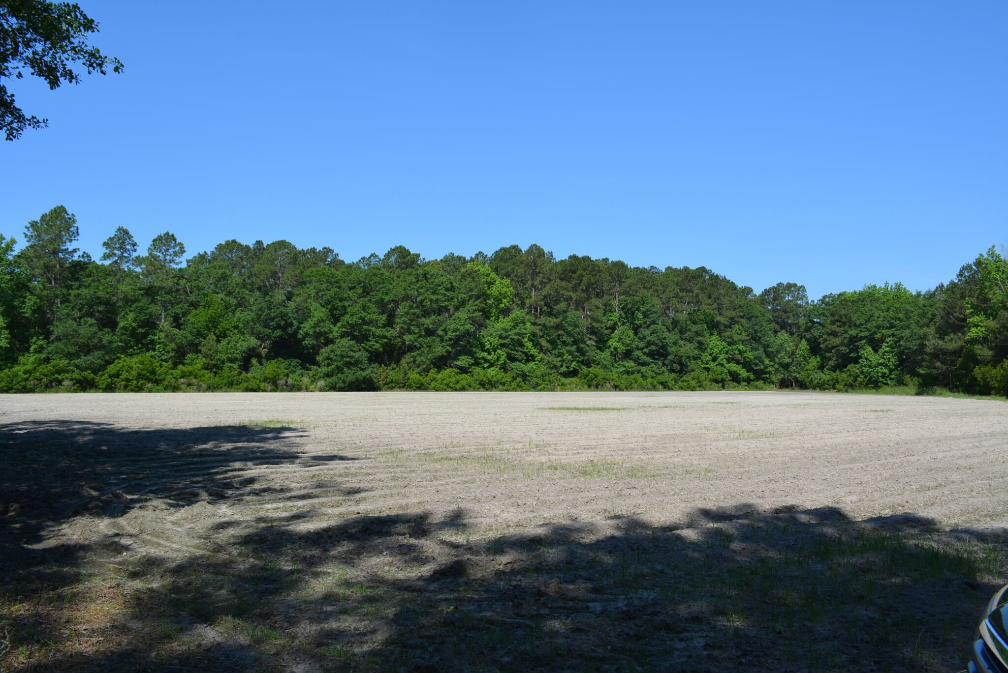 193 acre +/- farm in Northern Effingham County - Land Unlimited