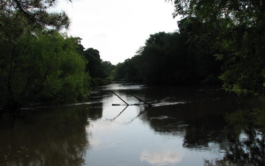Ogeechee River Escape