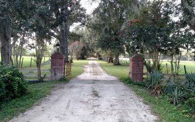 Honey Ridge Plantation