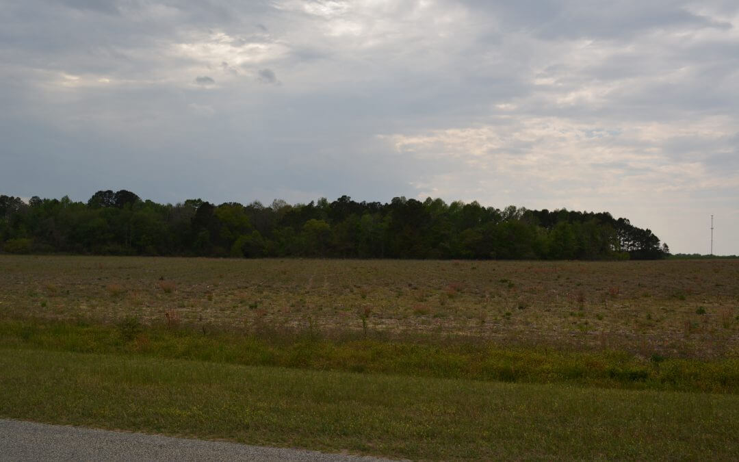 I-16 Commercial/Industrial Acreage (10ac.)- Metter