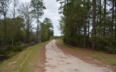 Bryan County Investment Land