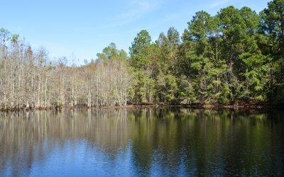 Hidden Pond (UNDER CONTRACT)