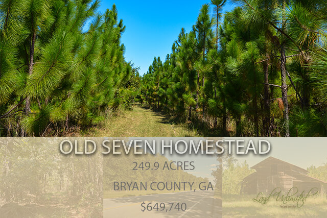 Old Seven Homestead