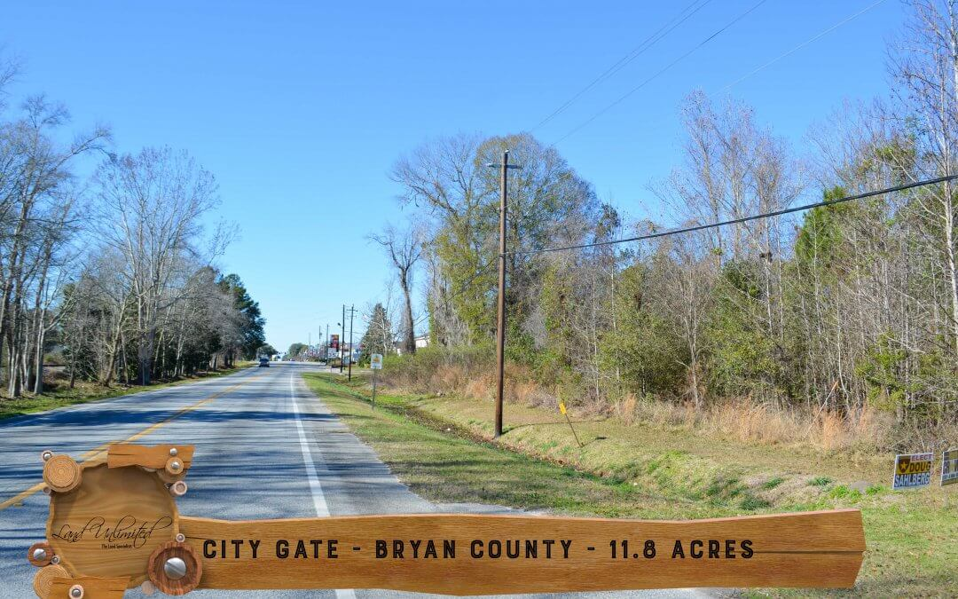 City Gate Investment Property