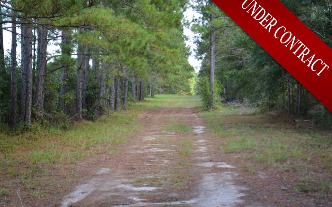 Rolling Hills – UNDER CONTRACT