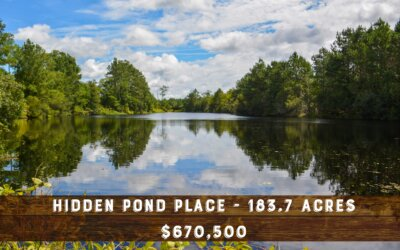 Hidden Pond Place