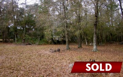 Wooded Lot in Guyton