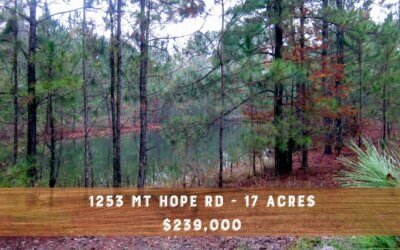 17 acres with Pond in North Effingham