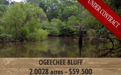 Ogeechee Bluff (UNDER CONTRACT)